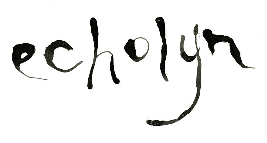 http://www.echolyn.com/teibpromo/logo.jpg